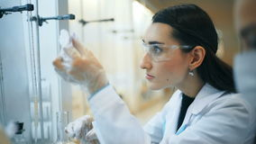 Two young female scientist doing experiments in lab.  stock video