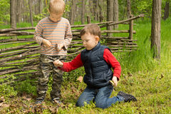 Two young friends playing in woodland Stock Photography