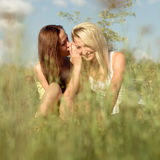 Two young girl friends sitting on grass at summer Royalty Free Stock Photo