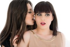 Two young girlfriends sharing their secrets, studio Stock Photography