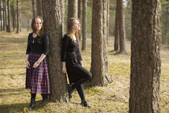 Two young girls close friends walk in a pine forest. Nature. Stock Image