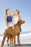 Two young girls and a dog on the beach Stock Photos