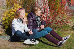 Two young girls eating an ice cream. Teenage girls eating an ice cream in a park Stock Images