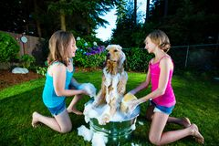 Two young girls giving their dog a bath Royalty Free Stock Images