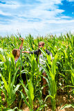 Two young girls having fun in a green cornfield Royalty Free Stock Photo