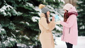 Two young girls outdoors on beautiful winter snow day stock video footage