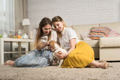 Two young girls are playing with a dog Royalty Free Stock Photos