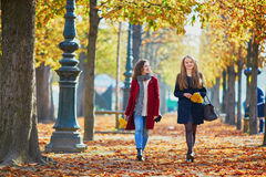 Two young girls on a sunny fall day Stock Images