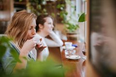 Two Young Girls. Talking And Drinking Coffee Stock Image