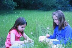 Two young girls about to blow on dandelions Stock Images