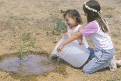 Two young girls watering a tree Royalty Free Stock Images