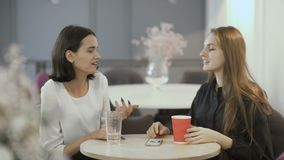 Two young girls whisper the secrets in ears in cafe. Young attractive workers sit in the co-working space at the table. Handsome women sit at the cafe at work stock video footage
