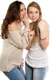 Two young gossipy women Stock Photography