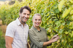 Two young happy vintners Stock Images
