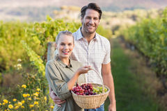 Two young happy vintners holding a basket of grapes Royalty Free Stock Photos