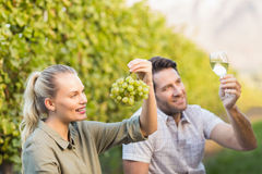 Two young happy vintners holding a glass of wine and grapes. In the grape fields Royalty Free Stock Image