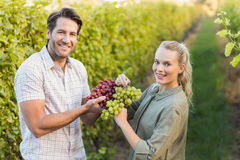 Two young happy vintners holding grapes Stock Photography