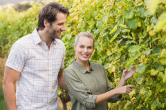 Two young happy vintners looking at camera Stock Photos