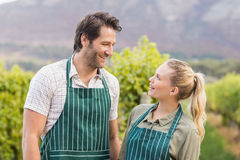 Two young happy vintners looking at each other Royalty Free Stock Photo