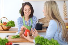 Two young happy woman making cooking in the kitchen. Friendship and culinary concept. Two young happy women making cooking in the kitchen. Friendship and Stock Images