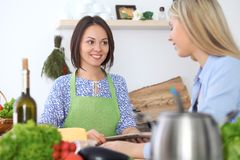 Two young happy woman making cooking in the kitchen. Friendship and culinary concept. Two young happy women making cooking in the kitchen. Friendship and Royalty Free Stock Photos