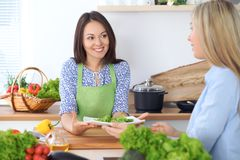 Two young happy woman making cooking in the kitchen. Friendship and culinary concept. Two young happy women making cooking in the kitchen. Friendship and Stock Photography