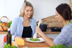 Two young happy woman making cooking in the kitchen. Friendship and culinary concept. Two young happy women making cooking in the kitchen. Friendship and Royalty Free Stock Photography