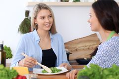 Two young happy women are cooking in the kitchen. Friends are having fun while preapering healthy and tasty meal Royalty Free Stock Images