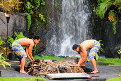 Two young Hawaiian men uplift a cooked pig. Honolulu, Hawaii - May 27, 2016: Two young Hawaiian men at the Polynesian Cultural Center uplift a pig cooked in the Royalty Free Stock Photos