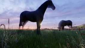Two young horses graze on a picturesque green meadow near a beautiful pond on a beautiful spring morning. 3D Rendering. Two young horses graze on a picturesque royalty free illustration