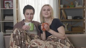 Two young lesbian girls are sitting on the couch, covered with a warm blanket, holding cups in their hands, drinking. Dark tea, coffee, cuddling 60 fps 4k stock video footage
