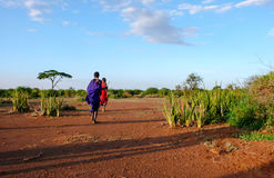 Two young male Masai warriors in the savannah of Tanzania royalty free stock photo