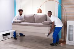 Two Male Movers Placing The Sofa. Two Young Male Movers In The White Uniform Placing The Sofa In The Living Room royalty free stock photos
