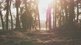 Two young male runners synchronous running in autumn forest trail. People running exercises outdoors to maintain health. On nature background. Sport healthy stock footage