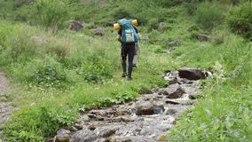 Two young man hiking in forest mountains in summertime stock video footage