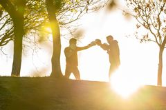 Two Young Men Boxing Outdoors royalty free stock photos