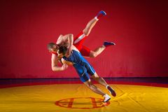 Two young men  wrestlers. Two  strong men in blue and red wrestling tights are wrestlng and making a suplex wrestling on a yellow wrestling carpet in the gym Stock Photos