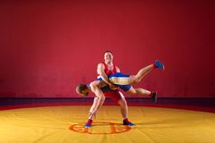 Two young men  wrestlers. Two strong wrestlers in blue and red wrestling tights are wrestlng and making a  making a hip throw  on a yellow wrestling carpet in Royalty Free Stock Image