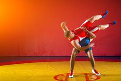 Two young men wrestling. Two young men in blue and red wrestling tights are wrestlng and making a hip throw on a yellow wrestling carpet in the gym Royalty Free Stock Image