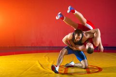 Two young men wrestling. Two young men in blue and red wrestling tights are wrestlng and making a suplex wrestling on a yellow wrestling carpet in the gym Royalty Free Stock Photos