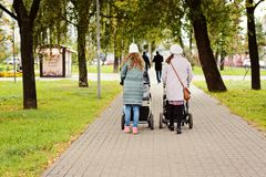 Two young moms girlfriends are walking with young children in strollers for an autumn Park. Women on a walk with the kids, the vie Stock Image