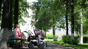 Two young mothers with buggies in the park. Two mothers with buggies  are sitting in the park stock video footage
