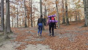 Two young people climb high into the mountains. Autumn walk in the woods. Slow motion stock video footage