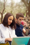 Two young people on picnic sitting on blanket. Under the olive trees Stock Images