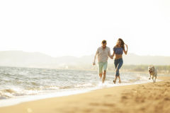 Two young people running on the beach kissing and holding tight with dog.  Stock Photography