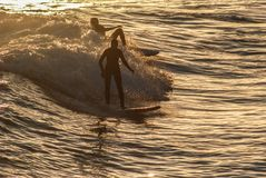 Two young people surfing the waves on a winter afternoon on a mediterranean beach Royalty Free Stock Photography