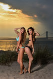 Two young pretty bikini models on the beach. Stock Images
