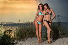 Two young pretty bikini models. Stock Photo
