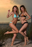 Two young pretty bikini models. Stock Photography