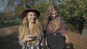 Two young pretty blonde girls having fun in autumn park. Two cheerful girls walking in the autumn park. Two pretty girls talking and laughing in an autumn park stock video footage